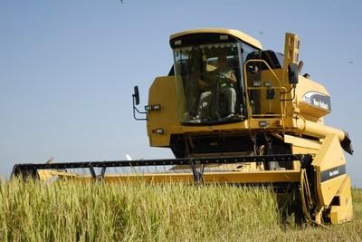 20131026000404-cosecha-de-arroz1.jpg